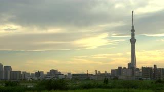 Tokyo Sky Tree Towering Over Urban Landscape, Japan