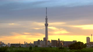 Tokyo Sky Tree With Surrounding Buildings, Sunset, Japan