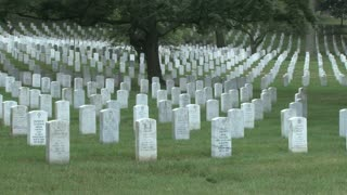 Tombstones at Arlington National Cemetery 8
