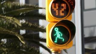 Traffic Walk Sign