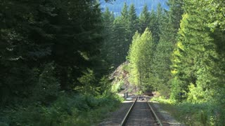 Train Tracks In Secluded Forest