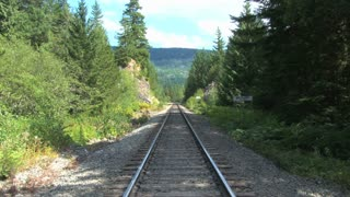 Train Tracks Through Whistler Forest