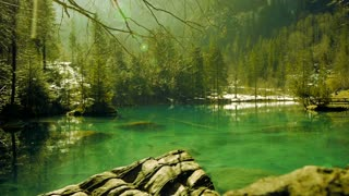 turquoise lake water. green nature background. resort park