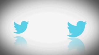 Twitter Logo Birds Jumping