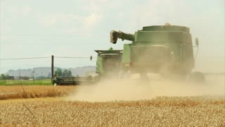 Two Combines Harvest Wheat With Dust Cloud