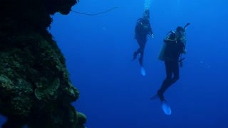 Two Divers Swimming in Open Water Next to Reef