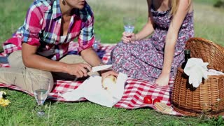 Two girlfriends prepare sandwiches on picnic, crane shot