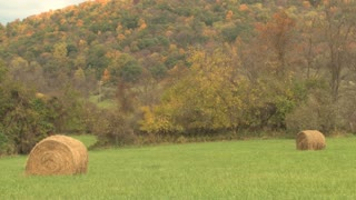 Two Hay Bales In Field