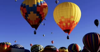 Two hot air balloons float over top hundreds more about to launch into the sky