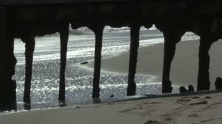 Underneath Beach Pier