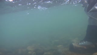 Underwater Shot Of Fly Fisherman, Boots, And Casting