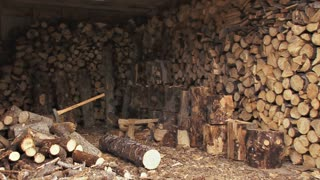 Unloading Logs and Saw in Woodshed