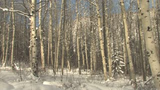 Vail Colorado Snow 43