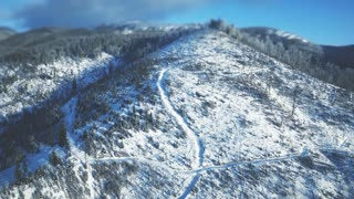 4K Aerial Drone View: Flight over winter mountains in sunny day. Ski slopes with pine tree forest around. Majestic nature landscape. Holidays in Ski Resort Bukovel, Carpathian Mountains, Ukraine