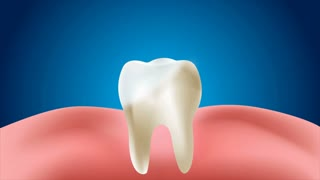 4 K Animation Clean And Dirty Tooth And Gum For Whitening And Protection Healthy Oral Concept