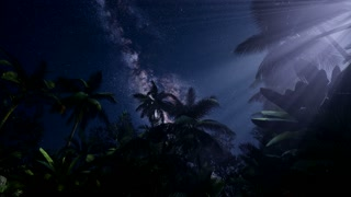 4K Astro of Milky Way Galaxy over Tropical Rainforest. Elements of this image furnished by NASA
