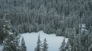 4K UHD Aerial of Woman Walking In Snowy Meadow
