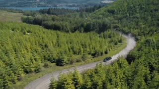4K UHD Aerial of Truck Driving Through New Growth Forest