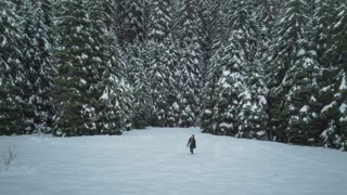 4K UHD Aerial of Woman Walking Into Snowy Meadow