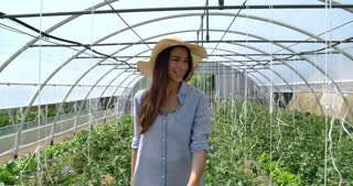 A beautiful girl in a straw hat, goes and looks at the plantation, in a greenhouse. Concept: bio products, natural products, fresh, delicious, fruits, vegetables, grow, water, plants, photosynthesis