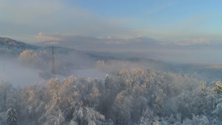 AERIAL: Flying over misty forest towards snowy countryside town at winter sunset