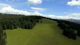 Aerial shot of a field of green with blue skies, white clouds and pine trees in Colorado Rocky Mountains