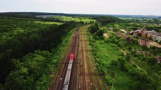 Aerial view of train in the forest