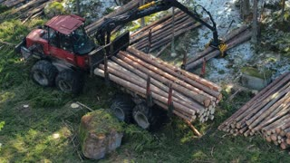 Areal view process logging forest. Forestry equipment. Logging industry