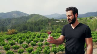 Beautiful winemaker tasting wine on the background of his vineyard plantation