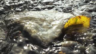 Close-up super slow motion flowing stream washing the stone and a beautiful autumn yellow leaf