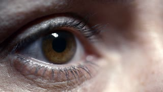 Closeup shot of brown eye of woman reading something on computer screen