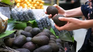 Customer Hand Choosing Avocado in Supermarket
