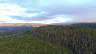 Drone flying over pine trees at sunset in the Colorado Rocky Mountains