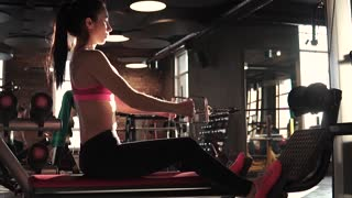 fitness girl training in the gym. attractive sportswoman doing an exercise on a training apparatus in the gym. girl doing an exercise on the muscles of the back