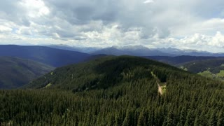 Flying over dense pine trees over a forest in the Rocky Mountains