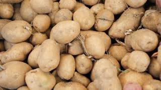 Fresh organic potatoes at the local Farmer's Market.