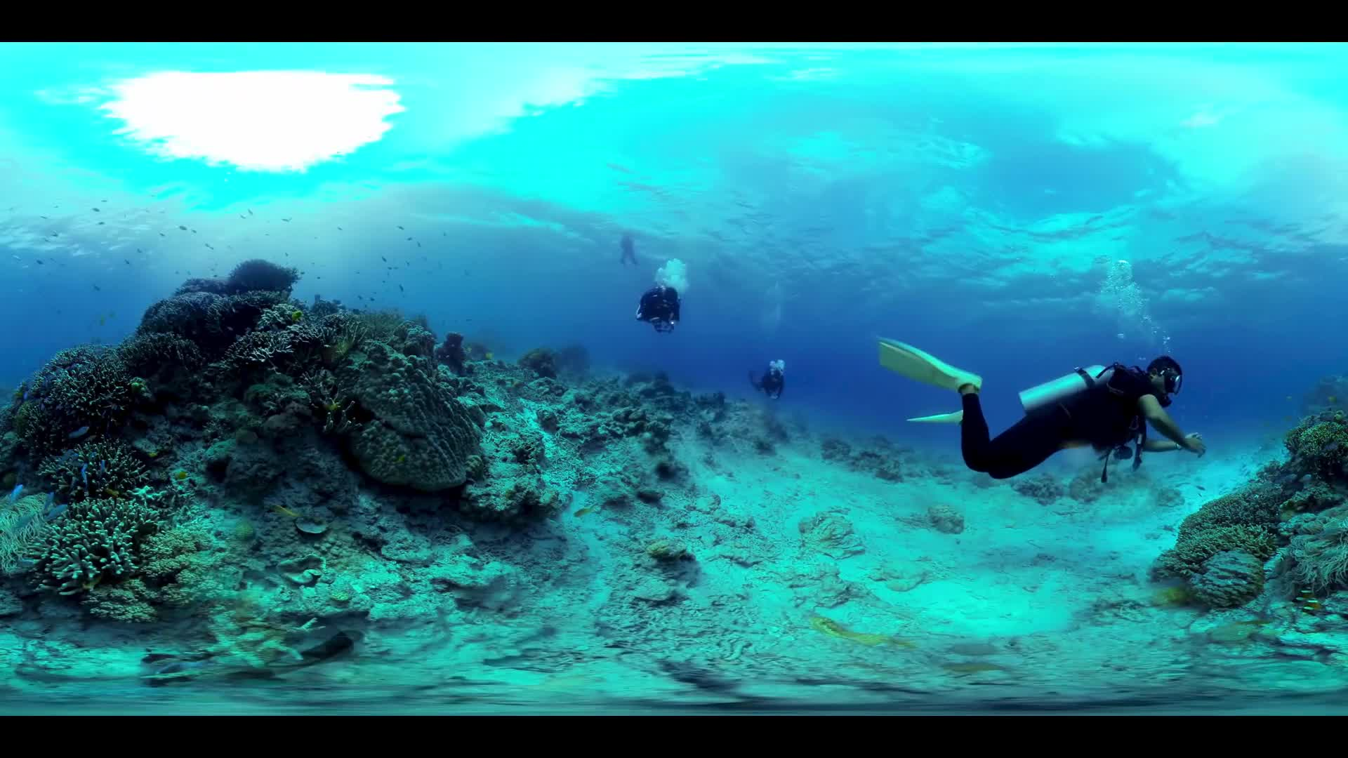 Great Barrier Reef Scuba Diving 360 VR - Multi-shot