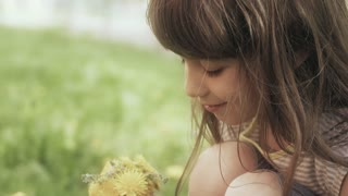 Little girl collects a bouquet of dandelions in a meadow.