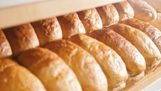 Many loaves of bread on a tray