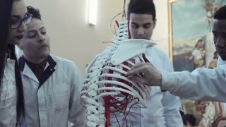 Medical student examining skeleton in human anatomy class. 4K middle round stabilized shot