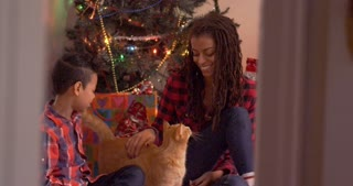 Mother and son petting cute tabby cat and laughing in front a blinking Christmas tree - mixed - slow motion