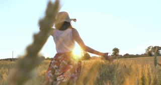 On a sunny day, a woman is walking along a wheat field with a white dress, in a straw hat on a nature background Concept life style ecology environment happy people freedom, wonderfully beautiful view