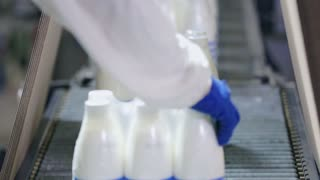Packaging milk bottles on conveyor line. Packaging line at dairy factory. Dairy industry. Food industry. Milk production plant. Milk packaging line. Milk package. Food package on conveyor belt