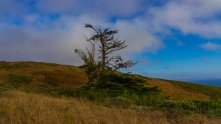 Point Reyes, California Motion Timelapse