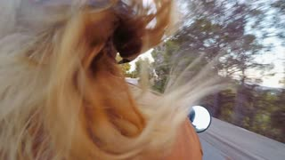 POV shot from passenger sit of blond female motorcycle driver, maneuvring through traffic on busy highway, in red retro vintage helmet and hipster leather jacket, driving moto taxi