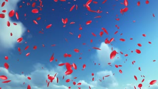 Rose Petals Flying, against blue sky