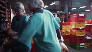 Rotation view of bread sorting process, bakery-workers in the uniforms packing the production in the trays, filling in the papers. Successful business, productive day.