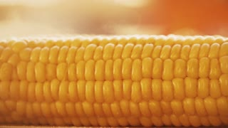 Salting freshly cooked boiled corn, slow motion video