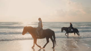 SLOW MOTION. View of women riding beautiful horses wading through the sea splashing water drops around in golden light sunset or sunrise. Stallion walking in ocean water