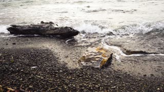 Super Slow Motion wave rushes ashore, stone and tree lie on the beach in pebbles